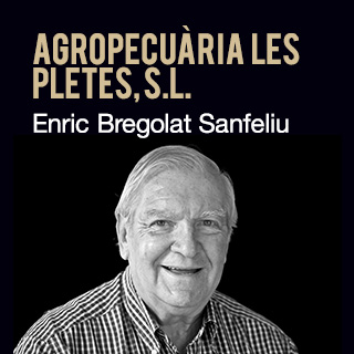 Enric Bregolat Sanfeliu